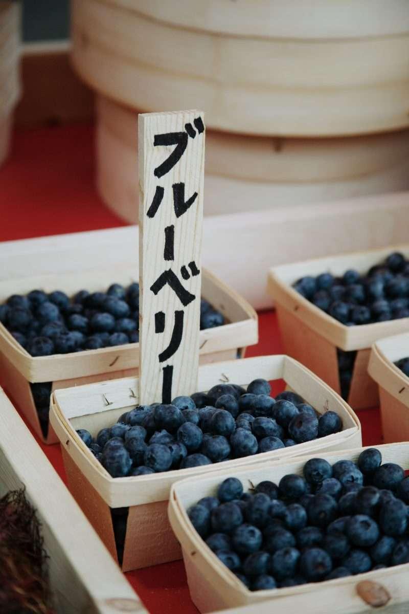 Marche Rouge Tokyo | Shiseido |Laila Gohar