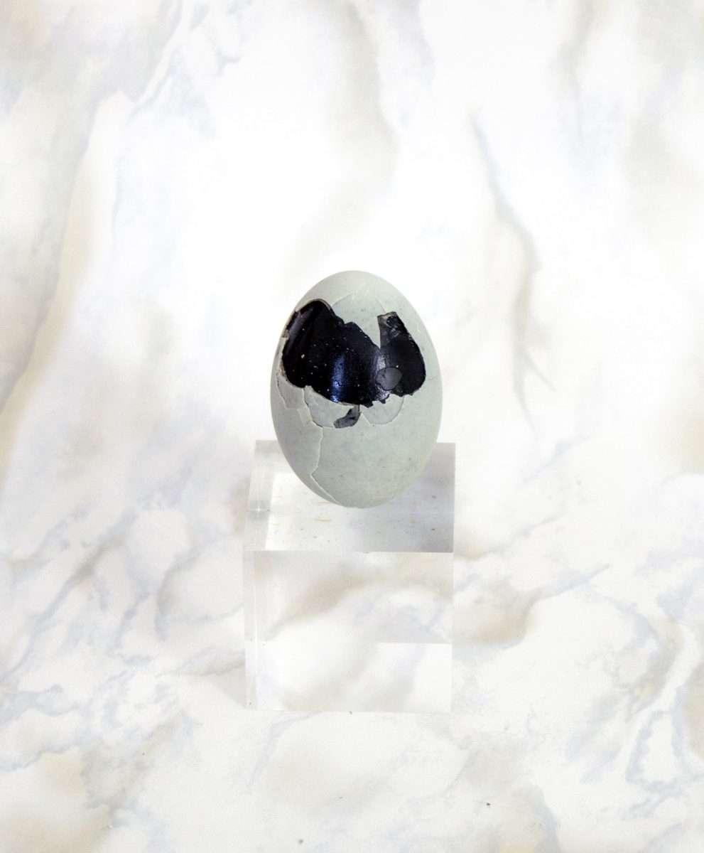 Thousand Year Old Egg | Animal Magazine |Laila Gohar