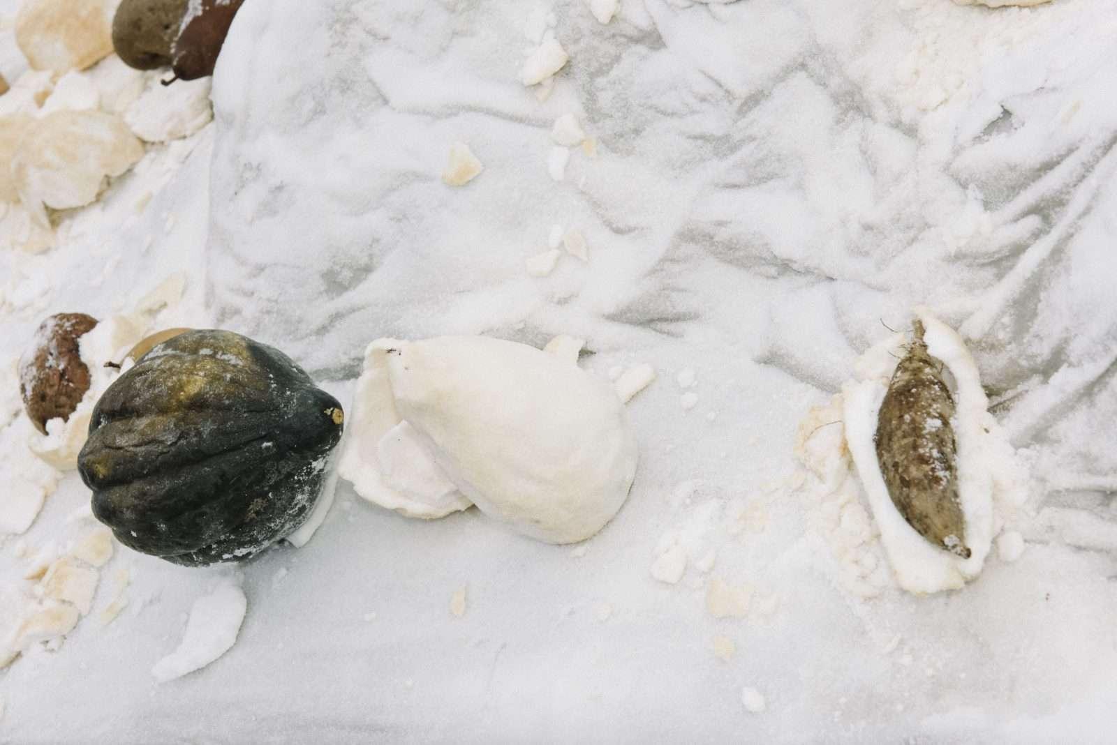 Salt Crust |Laila Gohar